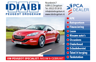 Vrolijke Strijders Sponsor DAB Peugeot Drogeham